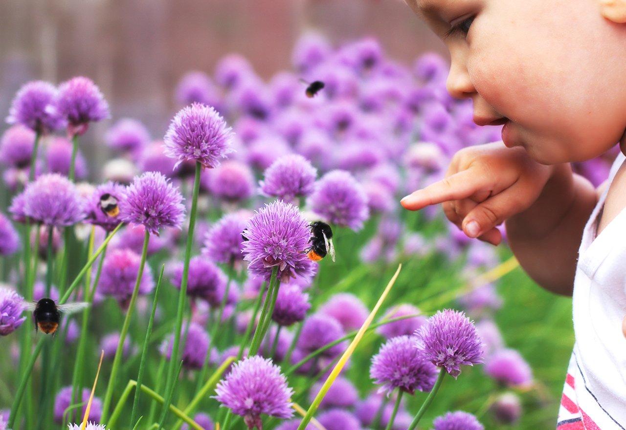 Bee Child Flower