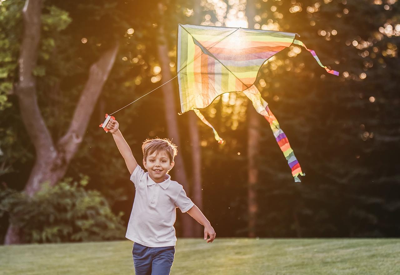Boy Kite