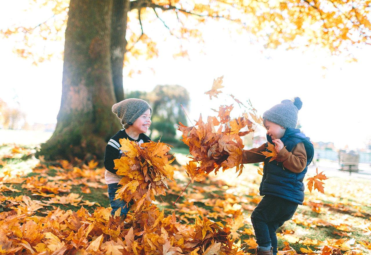 Kids Fall Leaves Lawn