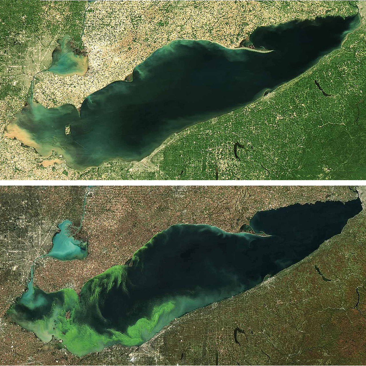 Lake Erie Algae Bloom Comparison