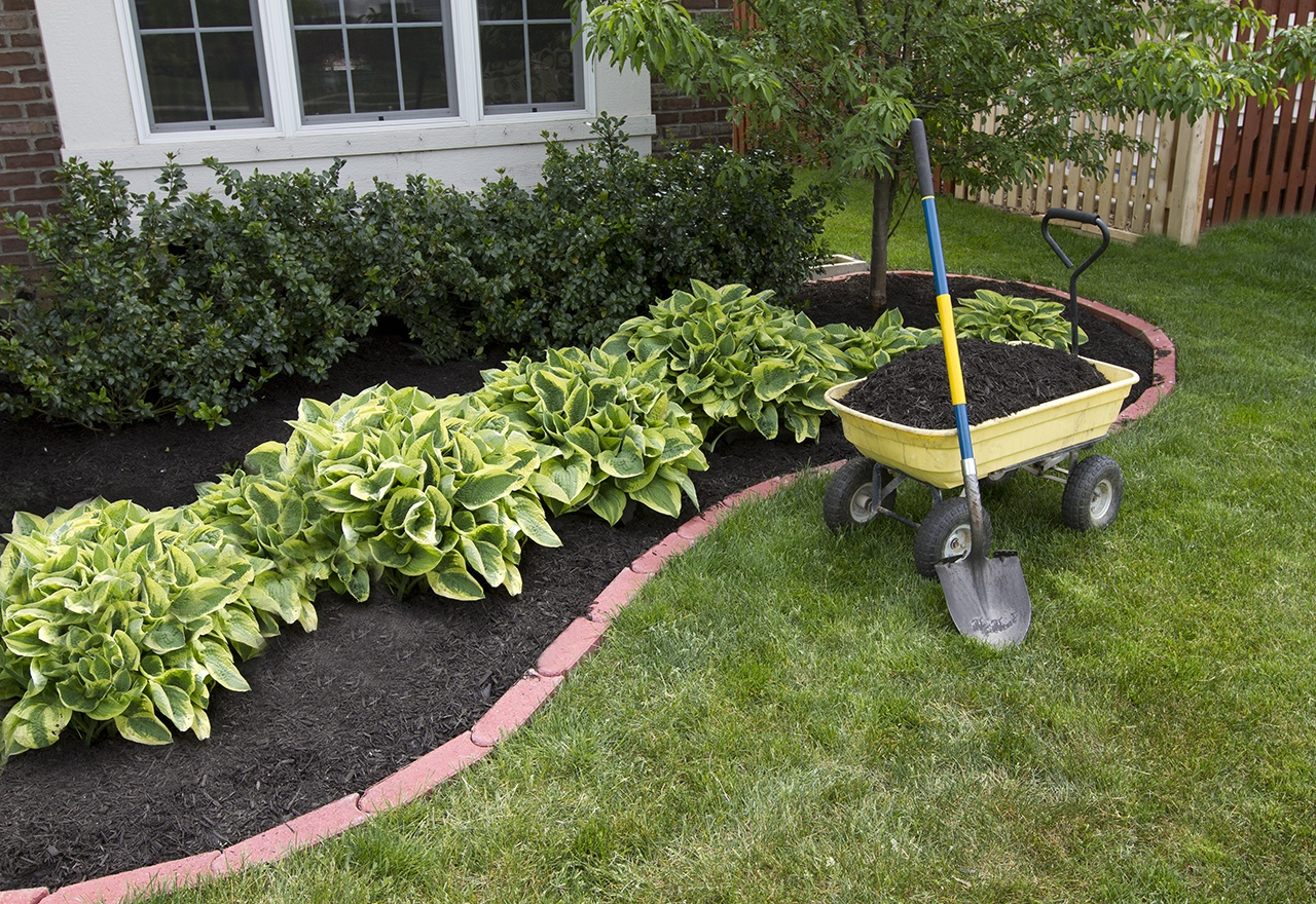 Mulch Bed Weed Suppression.jpg