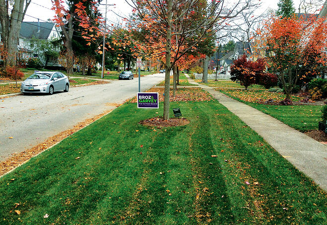 Mulch Mowing Leaves After