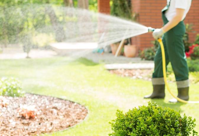 Technician Watering Lawn Hose