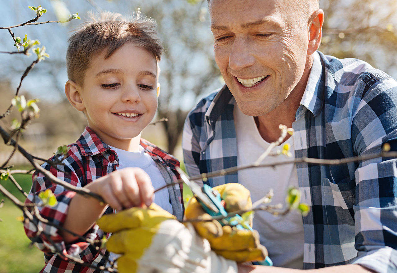 Tree Grandpa & Kid
