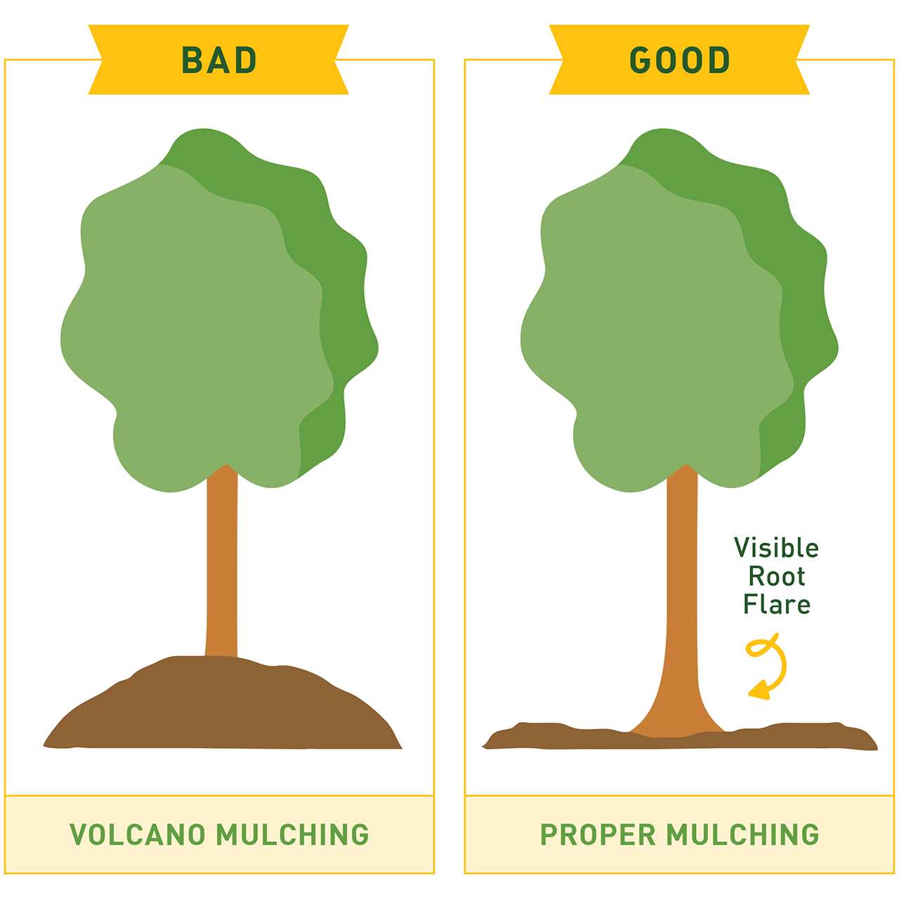 Volcano Mulching Graphic