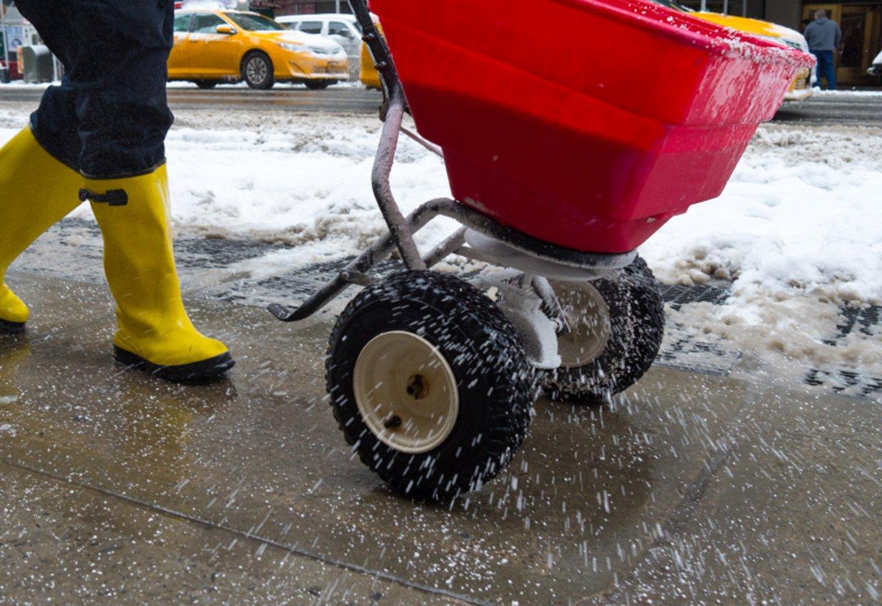 Winter Salting Sidewalk