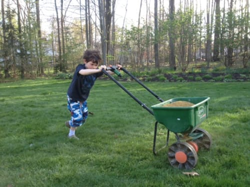 how to apply organic fertilizer